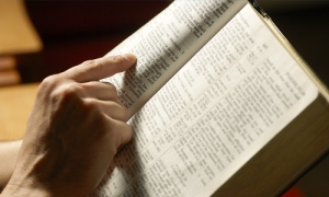 Search the Scriptures image